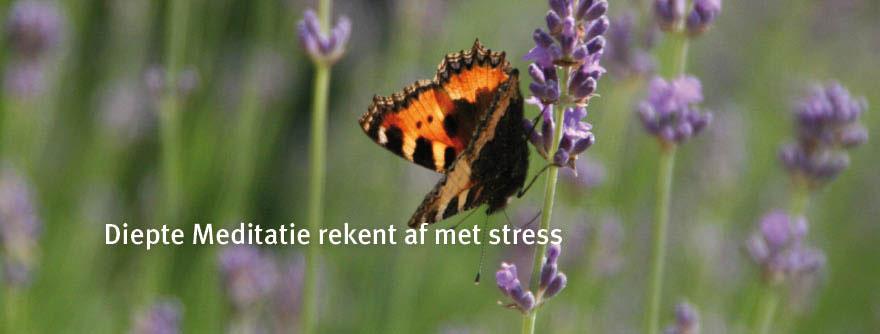 diepte_meditatie_is-12