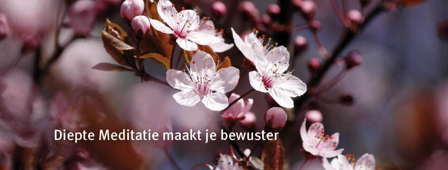 diepte_meditatie_is-20